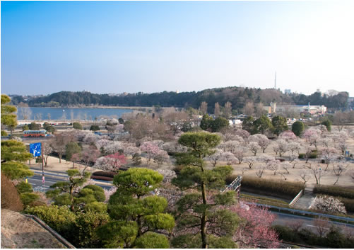 水戸市内観光3時間コース